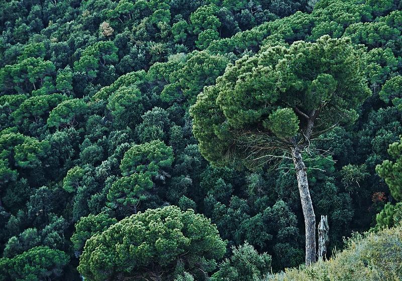 Fotografie Landschaft, Reise und Panorama